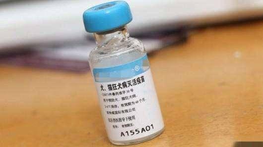 打狂犬疫苗时间