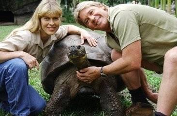寿命最长的龟